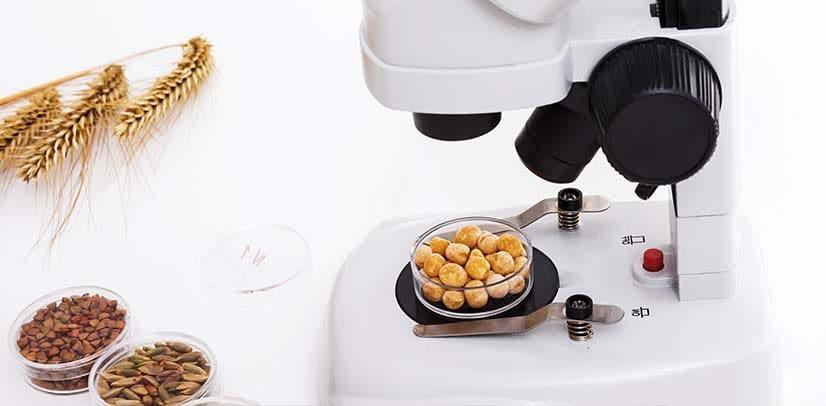 Συμβουλευτική επιχειρήσεων τροφίμων και υπηρεσίες έρευνας και ανάπτυξης τροφίμων (R&D)